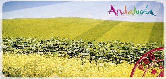 Primavera Andalucia