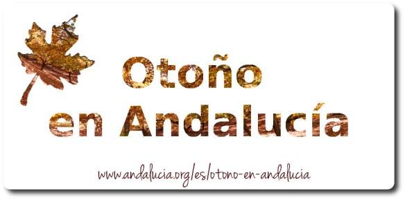 Otoño en Andalucía