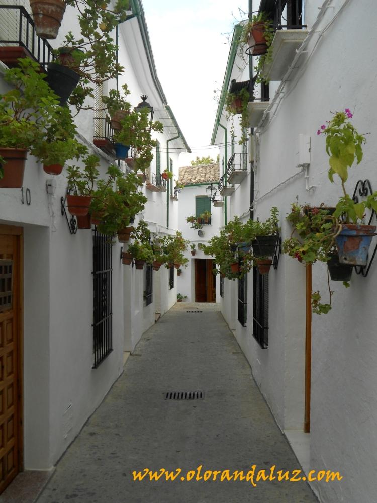 El Barrio de la Villa, un remanso de paz (2/3)