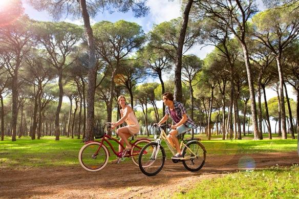 Cicloturismo en Andalucía