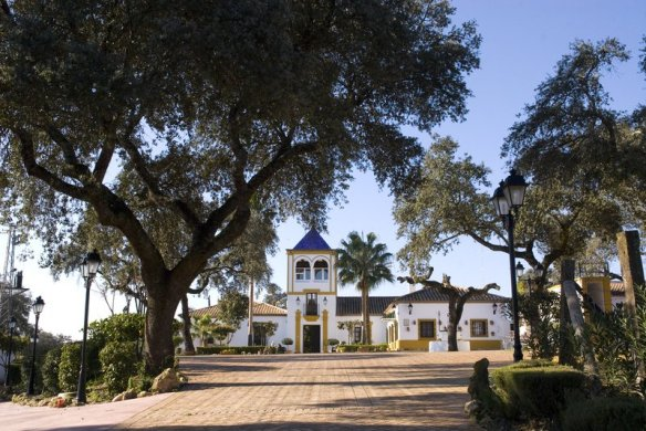 Promoción de noviembre. Hacienda La Torre