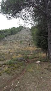 Conoce la Sierra Sur de Jaén. Quivirocio