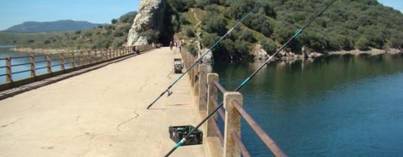 Embalse de Béznar, un lugar ideal para pescar Black Bass (5)