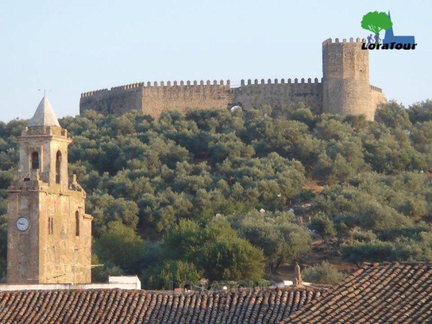 castillo alanis